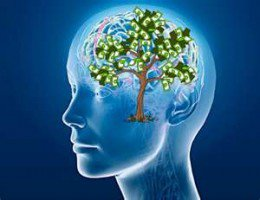 Mind tree in brain